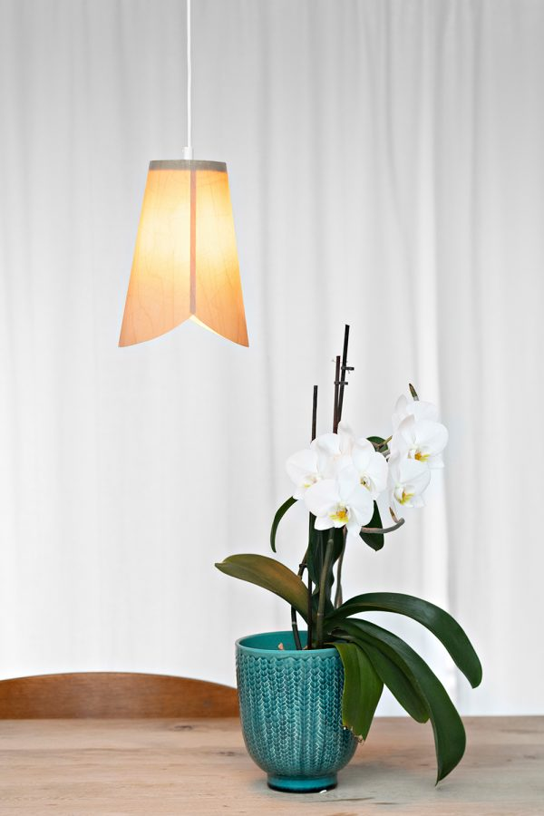 The Tulip pendant lamp with an orchid